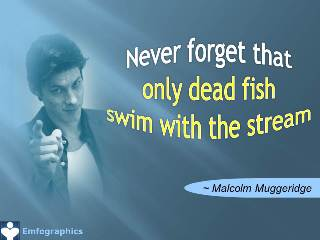 Never forget that only dead fish swim with the stream - Emfographics - Emotional Infographics